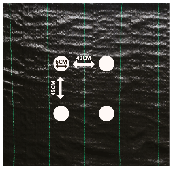 tkaná textília s otvormi typ C