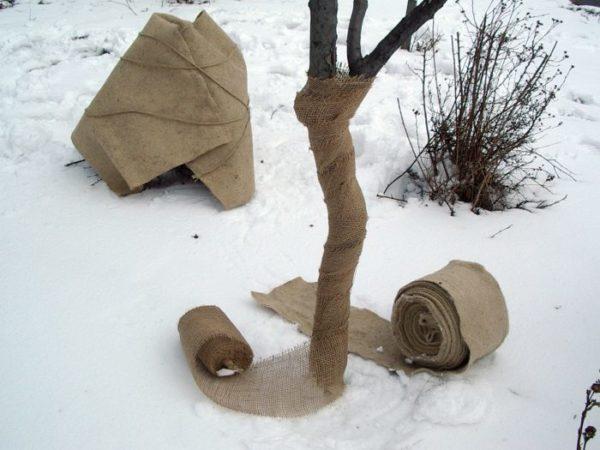 Jutová textília 180 g/m² - ochrana stromov